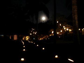 AliLA manggis_garden fullmoon