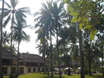 AliLA manggis_garden from SUP